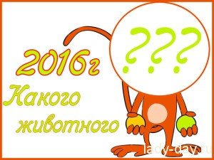 2016-god-kakogo-zhivotnogo-po-goroskopu-300x225