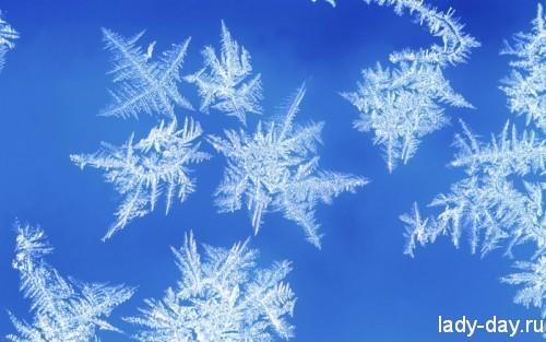 94221708_snowflakesandfrost7