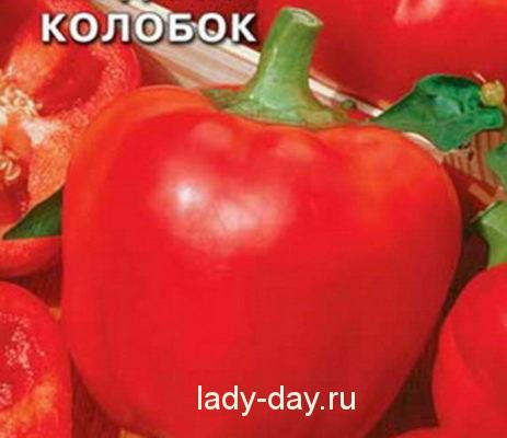 Kolobok2