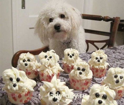 Капкейки собаки