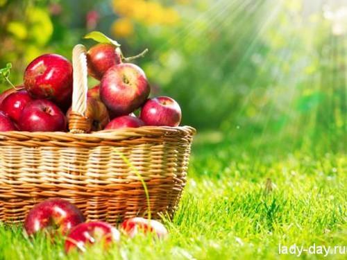 Яблочный Спас в 2015 году: когда