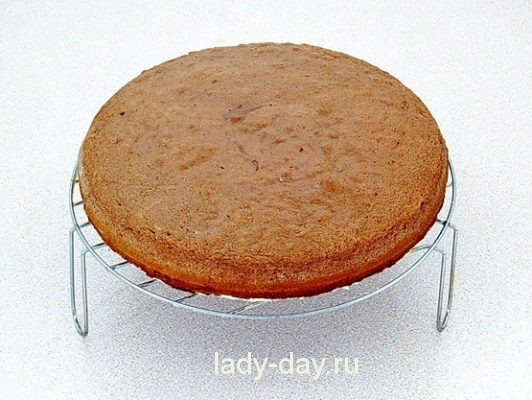 бисквит с какао