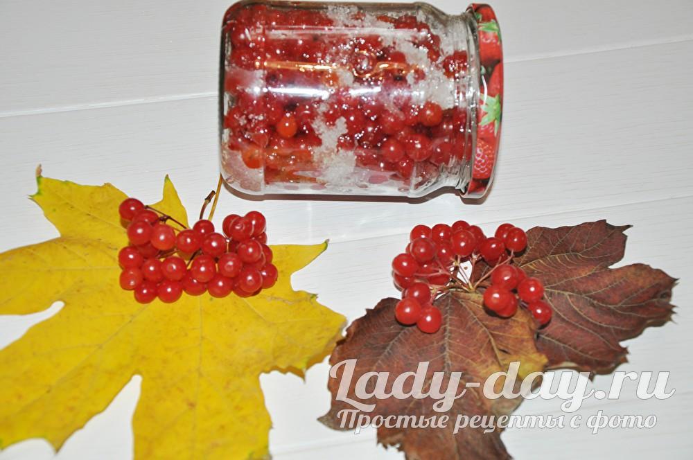 калина с сахаром на зиму без варки рецепт
