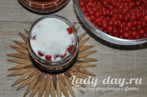 калина с сахаром на зиму