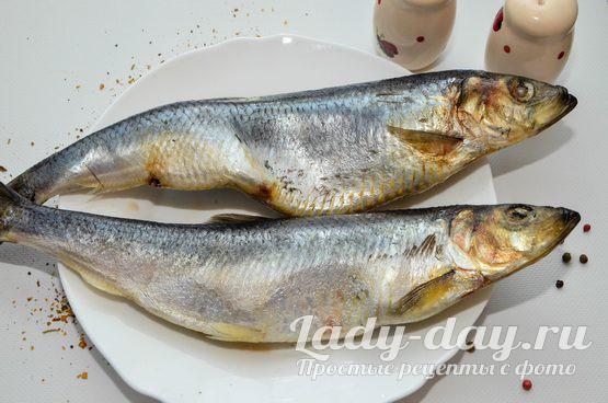 рыба селедка