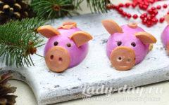 «Гламурные свинки»