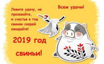 стихи новогодние
