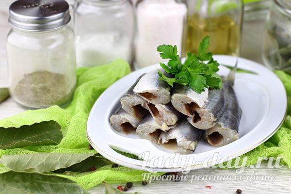 рецепт маринованной салаки