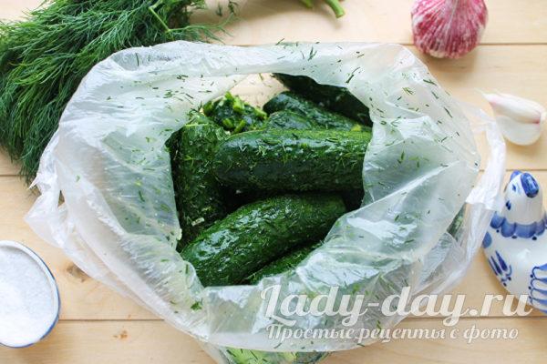 огурцы в пакете с чесноком и зеленью