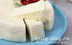 Мягкий сыр из молока по типу брынзы в домашних условиях