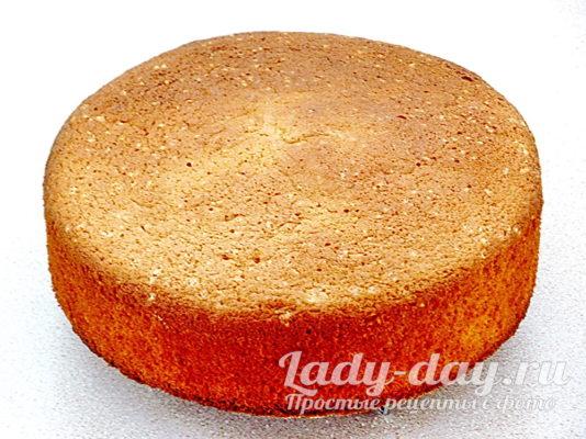бисквит с кукурузной мукой в духовке